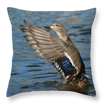 Show Off Throw Pillow by Fraida Gutovich