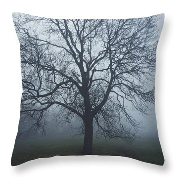 Shrouded In Fog Throw Pillow