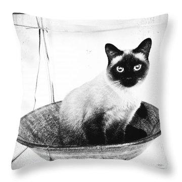 Siamese In A Bowl Throw Pillow
