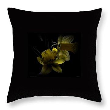 Silent Light Throw Pillow by Marija Djedovic
