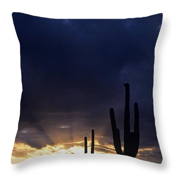 Silhouetted Saguaro Cactus Sunset At Dusk Arizona State Usa Throw Pillow