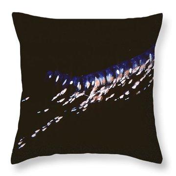 Siphonophore Stephonomia Sp Throw Pillow