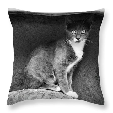 Skitty Throw Pillow