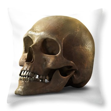 Skull Throw Pillow by Vitaliy Gladkiy