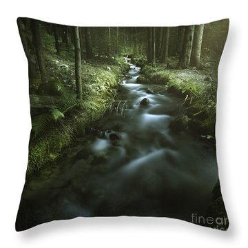 Small Stream In A Forest, Pirin Throw Pillow by Evgeny Kuklev