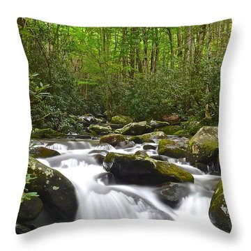 Smoky Mountain National Park Throw Pillow by Frozen in Time Fine Art Photography