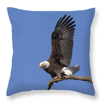 Smooth Landing 3 Throw Pillow