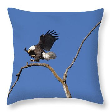 Smooth Landing 5 Throw Pillow by David Lester