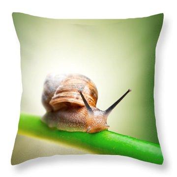 Snail On Green Stem Throw Pillow