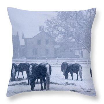 Snowfall Corral Throw Pillow