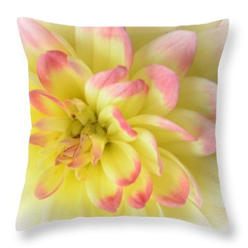Softness Throw Pillow by Kathleen Struckle
