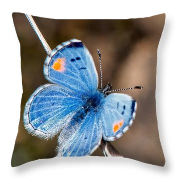 Sonoran Blue Throw Pillow