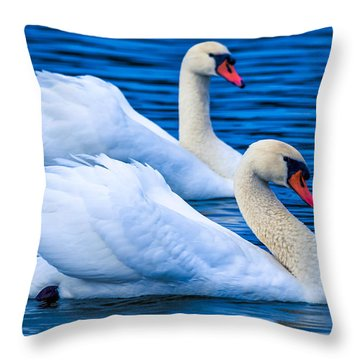 Throw Pillow featuring the photograph Soulmate Swans by Brian Stevens