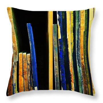Source Throw Pillow by Skip Hunt