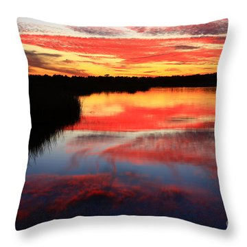 South Ponte Vedra Coast Throw Pillow