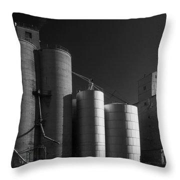 Spangle Grain Elevator Throw Pillow