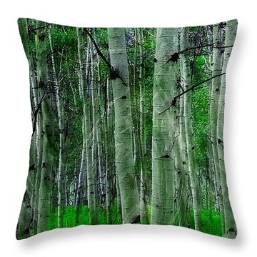 Throw Pillow featuring the photograph Spectacular Aspens by Cindy Greenstein