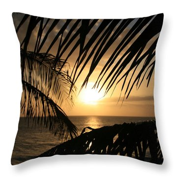 Throw Pillow featuring the photograph Spirit Of The Dance by Sharon Mau