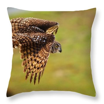 Spotted Eagle Owl In Flight Throw Pillow