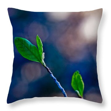 Spring In Bloom Throw Pillow by Linda Unger