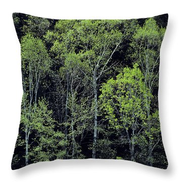 Throw Pillow featuring the photograph Spring Lights by Alan L Graham