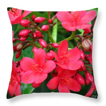 Lovely Spring Flowers Throw Pillow