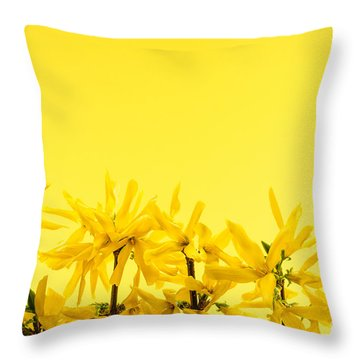 Spring Yellow Forsythia  Throw Pillow by Elena Elisseeva