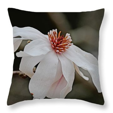Throw Pillow featuring the photograph Springtime by Linda Brown