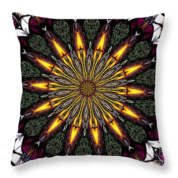 Throw Pillow featuring the photograph Stained Glass Kaleidoscope 1 by Rose Santuci-Sofranko