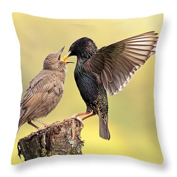 Starlings Throw Pillow by Grant Glendinning