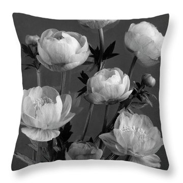 Still Life Of Flowers Throw Pillow