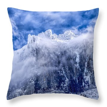 Throw Pillow featuring the photograph Stone Cold by Aaron Aldrich