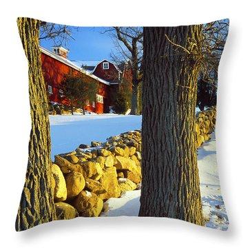Stonewall Farm Throw Pillow