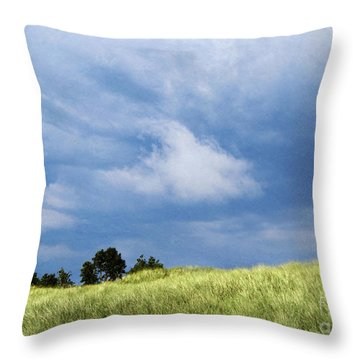 Storm Over Grassy Dune Throw Pillow
