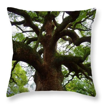 Throw Pillow featuring the photograph Strength by Julia Ivanovna Willhite