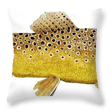 Throw Pillow featuring the painting Study Of A Brown Trout by Thom Glace