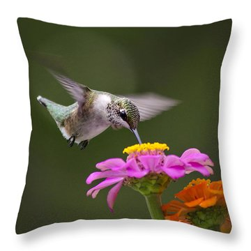 Summer Breeze Throw Pillow by Christina Rollo