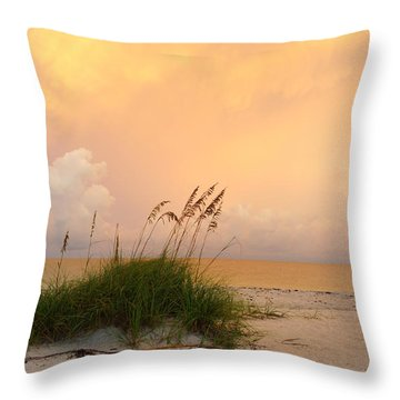 Summer Sunrise On Nokomis Beach Throw Pillow