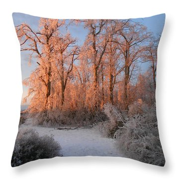 Sun Rising Throw Pillow by Diannah Lynch
