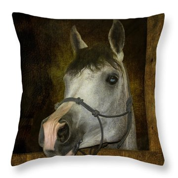 Sundance Kid Throw Pillow