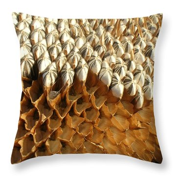 Sunflower Geometry Throw Pillow by Bonnie Muir