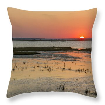 Throw Pillow featuring the photograph Sunset At Cheyenne Bottoms by Rob Graham