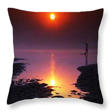 Sunset At Ganga River In The Planes Of Provinces Throw Pillow by Navin Joshi