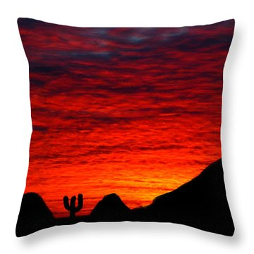 Sunset In The Desert Throw Pillow by Bruce Nutting