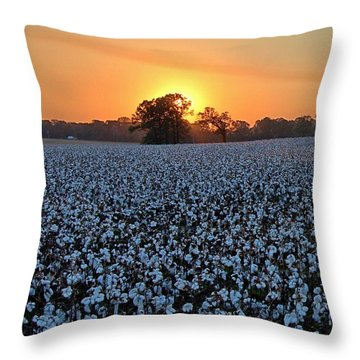 Sunset Over Cotton Throw Pillow