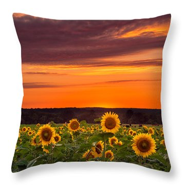 Sunset Over Sunflowers Throw Pillow