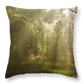 Sunshine Morning Throw Pillow