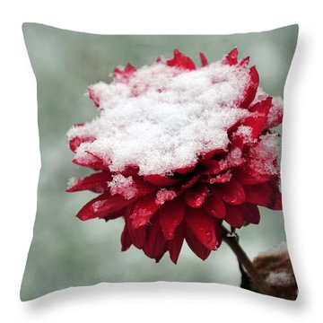 Survival Of The Fittest Throw Pillow