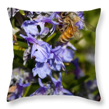 Sweet Rosemary Throw Pillow