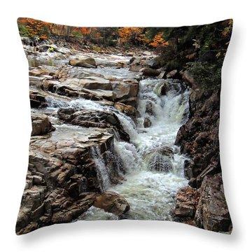 Swift River Throw Pillow by Marcia Lee Jones